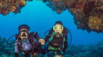 Scuba Diving Tour in Cozumel with Beach Break or Second Dive, Cozumel, Scuba Diving