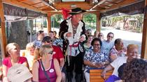 Historic Overview of Savannah Trolley Tour, Savannah