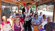 Historisch overzicht van Savannah Trolley Tour, Savannah, Historical & Heritage Tours