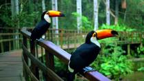 Parque das Aves Admission Ticket in Foz do Iguassu, フォス・ド・イグアス
