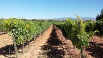 Algarve Wines Route, Faro, Wine Tasting & Winery Tours