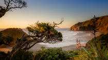 Full-Day Photography Tour into Auckland's Wild West, Auckland, Cultural Tours