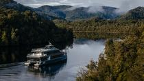 Afternoon Highlights Gordon River Cruise from Strahan, Strahan, Day Cruises