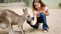 3-Day Blue Mountains and Hunter Valley Small-Group Eco-Tour, Sydney, Overnight Tours