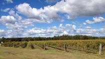 Hunter Valley Wineries and Wilderness Small-Group Tour, Sydney, Helicopter Tours