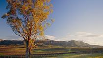 Sydney Combo: Deluxe Hunter Valley Wineries and Wilderness Small-Group Tour plus Half-Day Sydney...