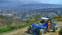 Malaga Shore Excursion: Panoramic Buggy Tour, Malaga