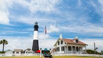 Tybee Island Delphintour, Savannah, Dolphin & Whale Watching