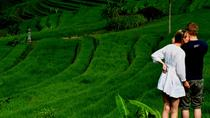 Private Tour: East to the North of Bali, Bali, City Tours