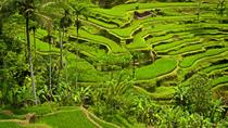 Private Tour: Half-Day Ubud and Tampak Siring Tour from Bali, Bali, null