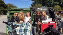 Pedicab Guided Tour of Central Park, New York City, City Tours