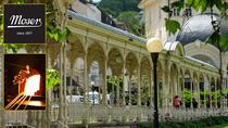 The Tour of Karlovy Vary and the Moser Factory, Prague, Cultural Tours