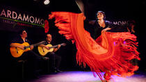 Madrid Flamenco and Wine Tour, Madrid, Food Tours