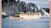 Christmas Day Cruise in the Stockholm Archipelago with Buffet Lunch, Stockholm, Christmas