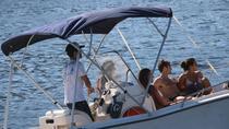 Rio de Janeiro Half-Day Speed Boat Tour, Rio de Janeiro, Private Sightseeing Tours