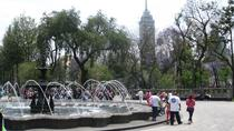 Glimpse of Mexico City Private Tour: Markets, History and Architecture, Mexico City, Private ...