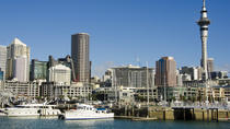 Auckland City Highlights Tour, Auckland, Bus & Minivan Tours
