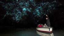 Auckland to Rotorua via Waitomo Glowworm Caves One-Way Tour, Auckland, Day Trips