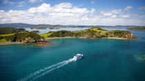 Bay of Islands (Paihia) to Auckland One-Way Tour, Bay of Islands, Bus Services