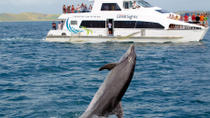 Best of the Bay Supercruise: Original Cream Trip, Bay of Islands, Multi-day Tours