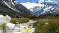 Christchurch to Queenstown via Mount Cook One-Way Tour, Christchurch, Bus Services