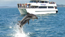 Full-day Bay of Islands, Hole in the Rock and Dolphin Cruise Tour from Auckland, Auckland, Day Trips