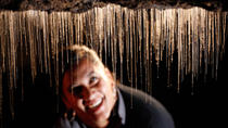 Rotorua to Auckland via Waitomo Glowworm Caves One-Way Tour, Rotorua, Bus & Minivan Tours