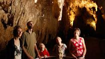 Waitomo Glowworm Caves Discovery Tour from Auckland, Auckland, White Water Rafting & Float Trips