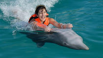 Grand Cayman Dolphin Swim Adventure, Cayman Islands, Swim with Dolphins