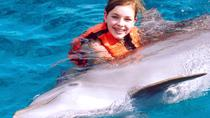 Ocho Rios Dolphin Encounter, Ocho Rios, Swim with Dolphins
