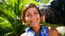 Sea Lion Discovery at Aquaventuras Park with Entrance Ticket, Puerto Vallarta, Nature & Wildlife