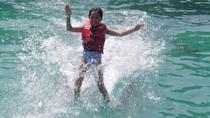 Tortola Dolphin Swim with Round-Trip Ferry from St John, St John, Day Trips