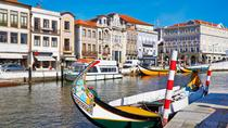 Aveiro and Bairrada Small Group Tour Food and Wine, Porto, Private Sightseeing Tours