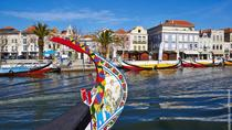 Aveiro and Bairrada Small Group Tour with 2 Gastronomic Experiences and 2 Wine Tastings, Porto, ...