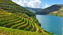 Douro Valley Small Group Tour with 4 Gastronomic Experiences and 3 Wine Tastings, Porto, Day Trips
