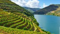 Douro Valley Small Group Tour with 4 Gastronomic Experiences and 4 Wine Tastings, Porto, Day Trips