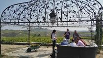 Douro Valley Small Group Tour with 4 Gastronomic Experiences and 4 Wine Tastings