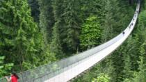 Dagstur til Vancouvers North Shore, inkludert hengebroen Capilano og Grouse Mountain, Vancouver, Day Trips