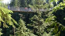 Vancouver Shore Excursion: Pre- Or Post-Cruise North Shore Tour, Vancouver, Ports of Call Tours