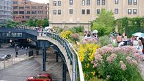High Line - Meatpacking District - Williamsburg Walking Tour in Portuguese, New York City, Food...
