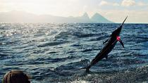 St Lucia Sport Fishing Tour, St Lucia, Fishing Charters & Tours