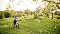 Private Easy Biking Tour of Prague Parks, Prague, Bike & Mountain Bike Tours