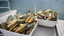 Marlborough Sounds Greenshell Mussel Tasting Cruise from Havelock, South Island, Helicopter Tours