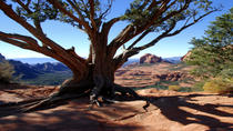 Old Bear Wallow Tour from Sedona, Sedona, Helicopter Tours