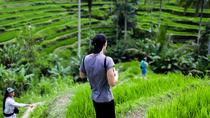 Ubud Tour With Rice Terrace Tegallalang Hiking and Coffee Plantation, Ubud, Coffee & Tea Tours
