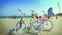 Bike Rental with Luggage Point in Barcelona , Barcelona, Bike Rentals