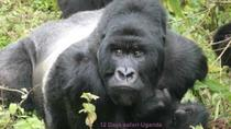 12 Days All Inclusive Uganda Tour, Kampala, Day Trips