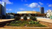 Tel Aviv Airport (TLV) to En Bokek - Private Transfer, Tel Aviv, Private Transfers