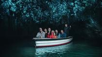 Waitomo Glowworm Caves Guided Tour, Waitomo, Kid Friendly Tours & Activities