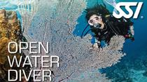 Magnetic Island 3-Day SSI Open-Water Learn To Dive Course, Magnetic Island, Scuba Diving